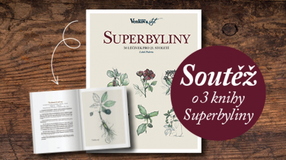 Kniha Superbyliny
